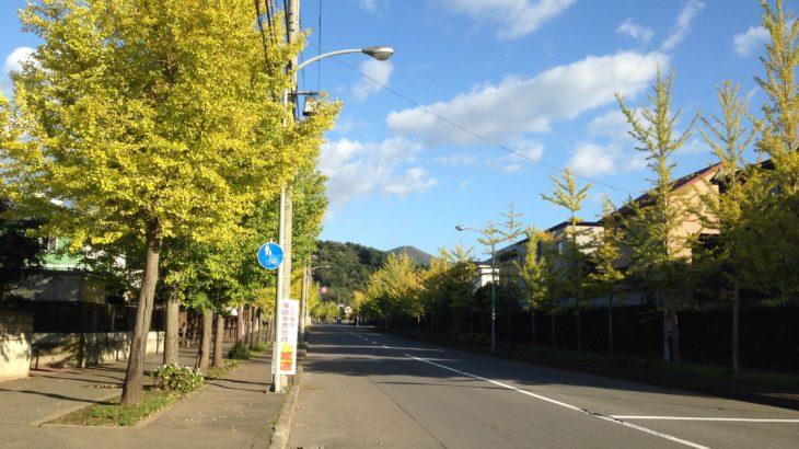 【雰囲気が多摩ニュータウンっぽい!?】青森市戸山団地を調査